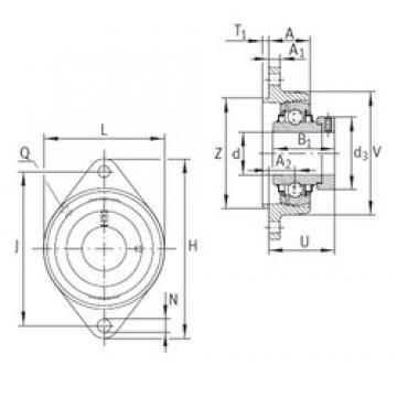 INA RCJTZ30 bearing units
