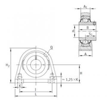 INA RSHEY45 bearing units