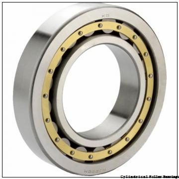 25 mm x 80 mm x 21 mm  NKE NU405-M cylindrical roller bearings