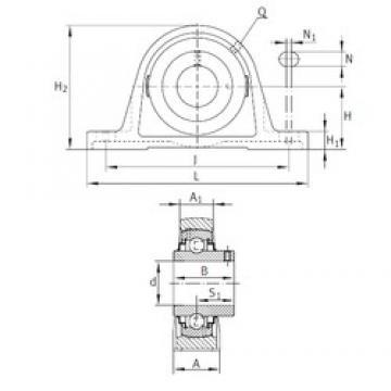 INA RAKY1 bearing units