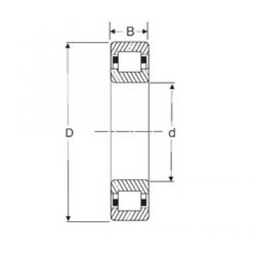 95 mm x 200 mm x 45 mm  SIGMA NUP 319 cylindrical roller bearings