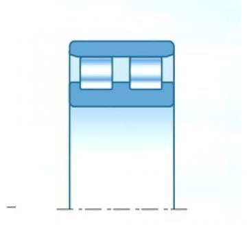 300,000 mm x 540,000 mm x 350,000 mm  NTN RNNJ6001DF cylindrical roller bearings