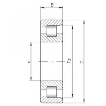 15 mm x 35 mm x 11 mm  ISO NF202 cylindrical roller bearings